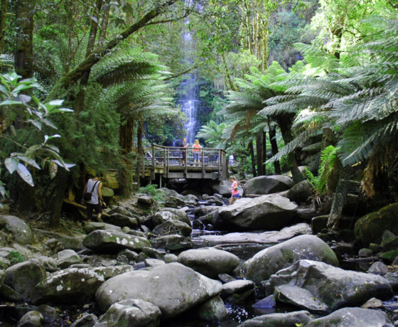 erskine falls chatby lane lorne on the great ocean road. Black Bedroom Furniture Sets. Home Design Ideas